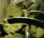 La produzione dell'olio extravergine: frangitori a martelli