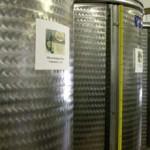 La conservazione dell'olio extravergine